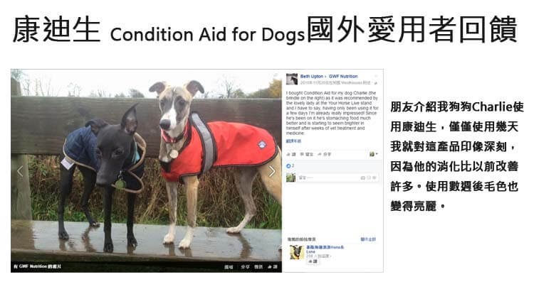 康迪生 Condition aid for dogs 評價